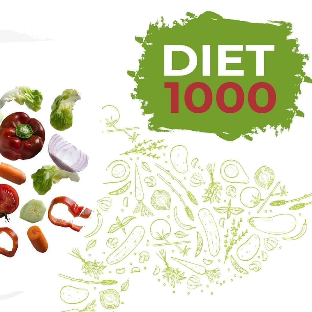 Diet 1000 Mockup Featured Image showcasing vegetables such as onions, cucumbers and tomatoes on the left side of the photo