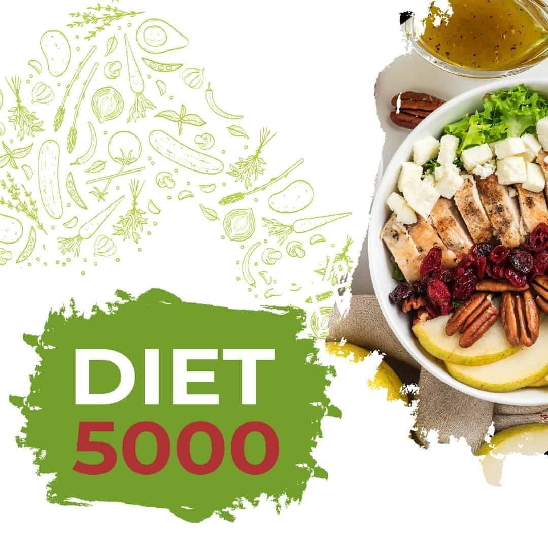 Diet 5000 mockup image that is available anywhere, with soup, and meat and salad in a white plate, on the right side.