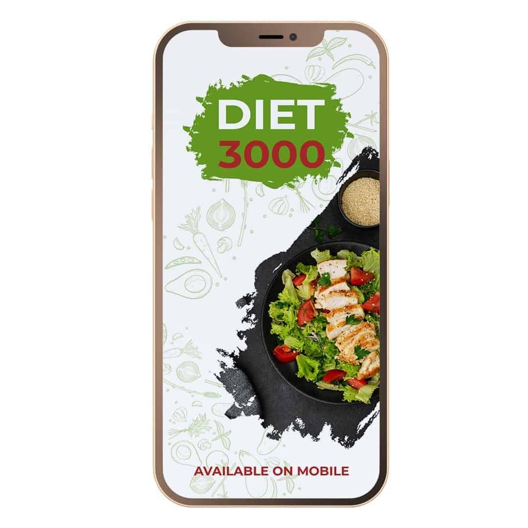 Diet 3000 Mockup Available on Mobile showcasing a salad as well as steak on the right side.