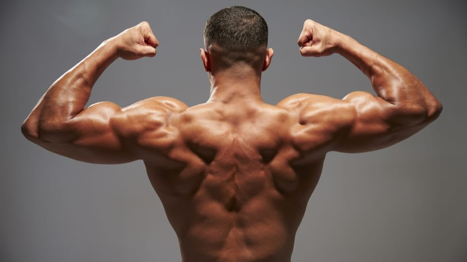 An image of a men with his back turned in front of the camera. He is flexing his muscles, while posing on a grey background.