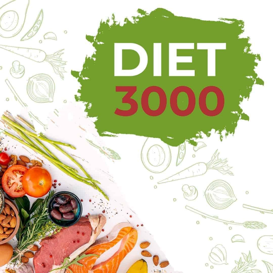 Diet 3000 Mockup Featured Image showcasing fish, meat and vegetables