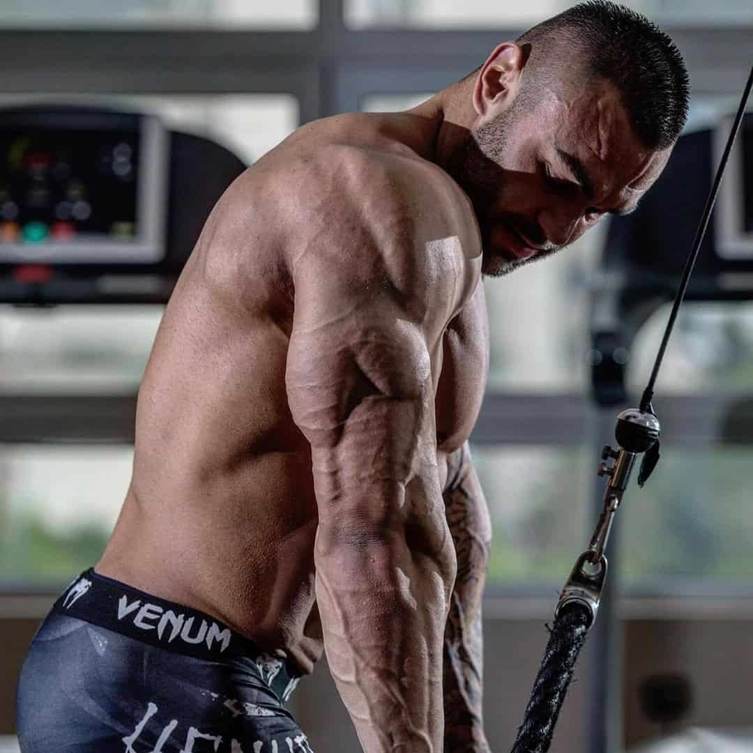 Hristijan Manasievski doing a triceps exercise at the gym in order to improve on his muscle growth. He is without t-shirt.