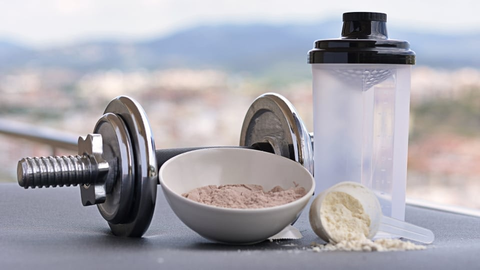An image of shaker, a dumbbell, achocolate protein powder in a plate and a vanilla protein powder in a dozer.