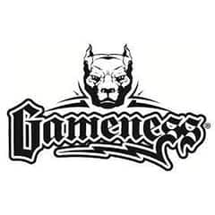 Gameness Official Logo in black color on White Background