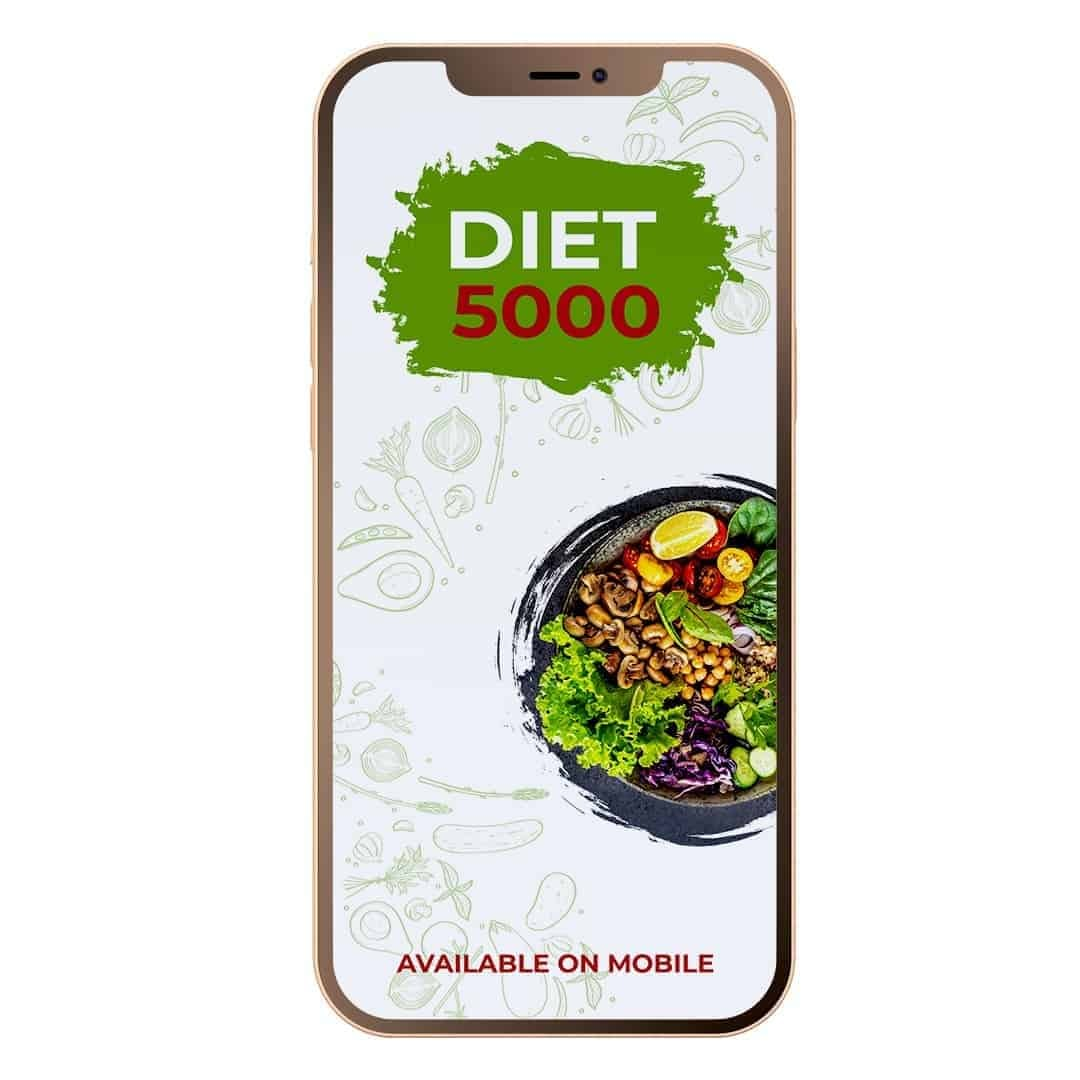Diet 5000 mockup image that is available on mobile, with vegetables in a grey plate on the right side of the screen.