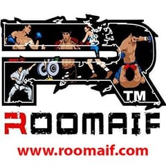 Romaif Official Logo on White Background